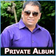 Just Walk into My Life (Remix) - Private Album (MP3 Format)
