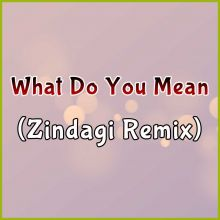 What Do You Mean (Zindagi Remix)