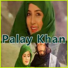 Mere Sanam Tera Khat Mila - Palay Khan