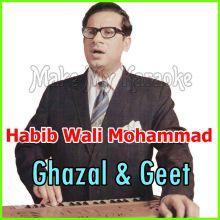 Aisi Bheegi Suhani Raat - Habib Wali Mohammed - Ghazal & Geet