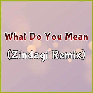 What Do You Mean (Zindagi Remix)