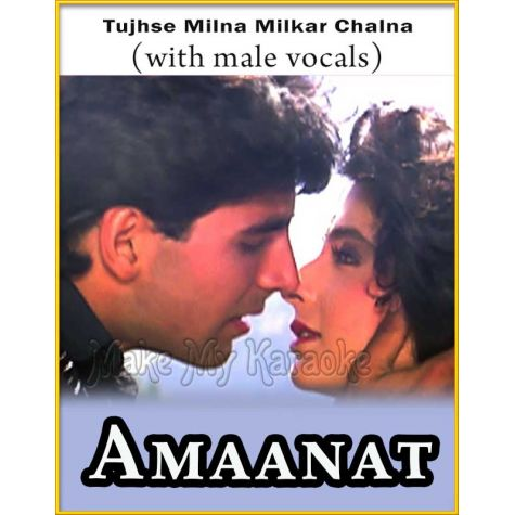Tujhse Milna Milkar Chalna (With Male Vocals) - Amaanat